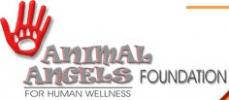 Animal Angels Foundation